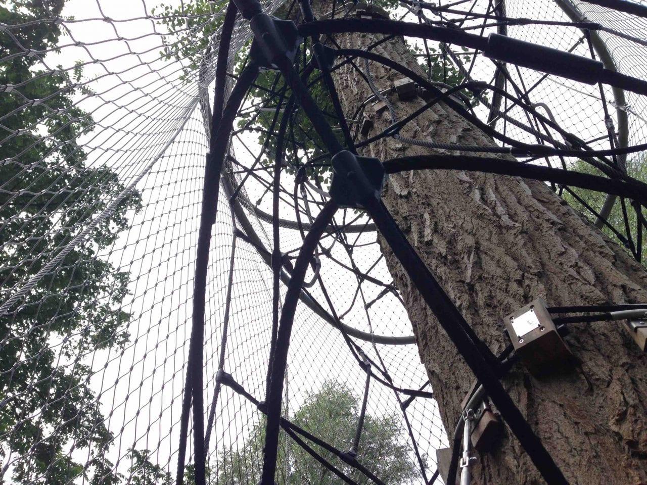 Speeltoestel rondom boom - Carl Stahl