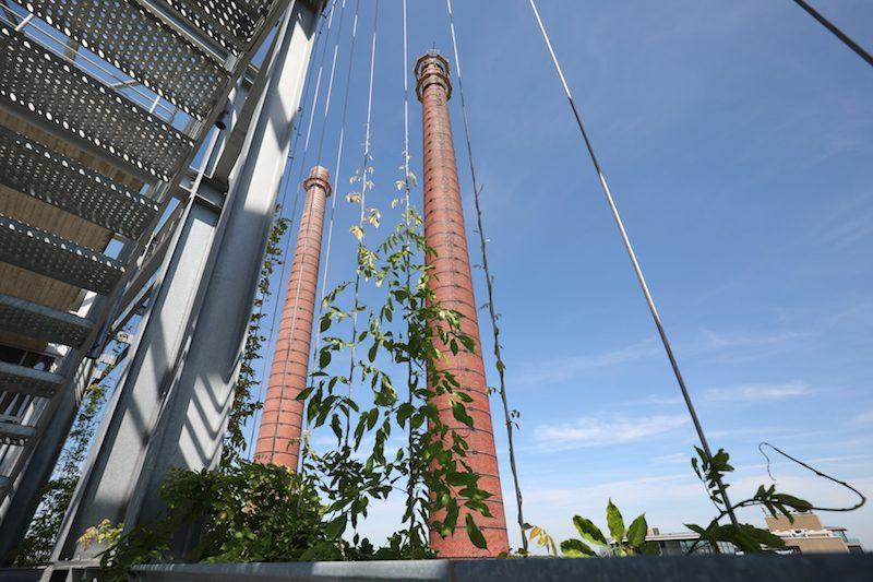 Groene gevel Powerhouse Eindhoven horizontale spankabels Carl Stahl